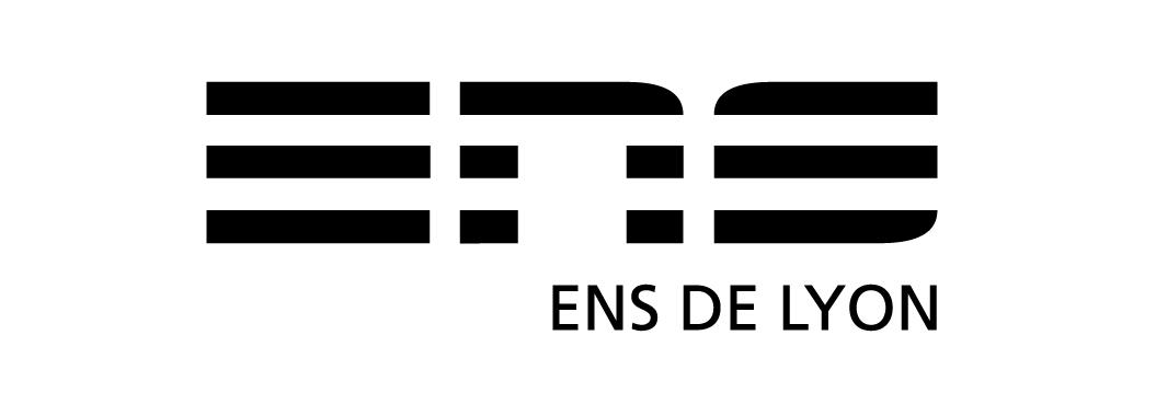logo_ens2010.jpg